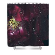 I Can Feel Your Heart Beating Shower Curtain by Laurie Search
