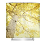 I Will Remember You Shower Curtain by Amy Tyler