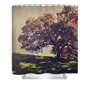 I Wish You Had Meant It Shower Curtain by Laurie Search