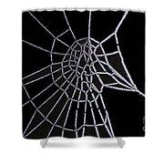 Ice Web Shower Curtain by Carol Lynch