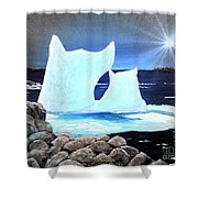 Icebergs At Sunset Shower Curtain by Barbara Griffin