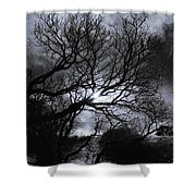 Ichabod's Pathway Shower Curtain by Donna Blackhall