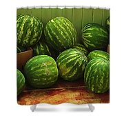 If I Had A Watermelon Shower Curtain by Patricia Greer