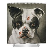 I'm A Bad Dog What Kind Of A Dog Are You Circa 1895 Shower Curtain by Aged Pixel