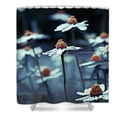 Imagine F03a Shower Curtain by Variance Collections