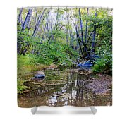 Imagine Us Together Here Shower Curtain by Heidi Smith