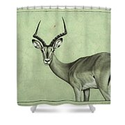 Impala Shower Curtain by James W Johnson