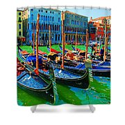 Impressionistic Photo Paint Gs 009 Shower Curtain by Catf