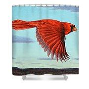 In Flight Shower Curtain by James W Johnson