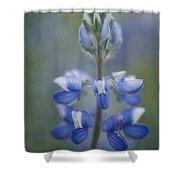 In Full Bloom Shower Curtain by Priska Wettstein