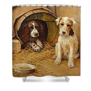 In The Dog House Shower Curtain by Samuel Fulton
