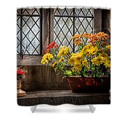 In The Light Shower Curtain by Adrian Evans