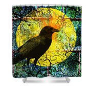 In The Night Shower Curtain by Nancy Merkle