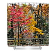 Indiana Fall Color Shower Curtain by Alan Toepfer