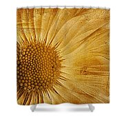 Infusion Shower Curtain by John Edwards
