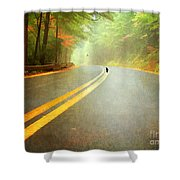 Into The Fog Shower Curtain by Darren Fisher