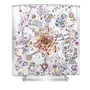 Intracellular Diversion Shower Curtain by Regina Valluzzi