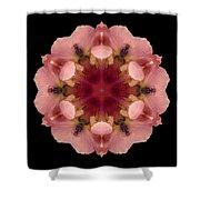 Iris Germanica Flower Mandala Shower Curtain by David J Bookbinder