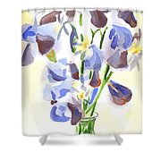 Irises Aglow Shower Curtain by Kip DeVore