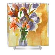 Irises With Stars Of Bethlehem Shower Curtain by Kip DeVore