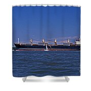 IS BIG REALLY BETTER Shower Curtain by Skip Willits