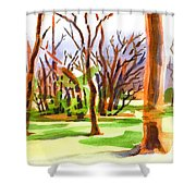 Island in the Wood Shower Curtain by Kip DeVore