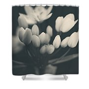 It's A New Life Shower Curtain by Laurie Search