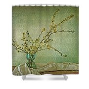 Ivory And Turquoise Shower Curtain by Priska Wettstein