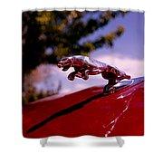 Jaguar Shower Curtain by Rona Black