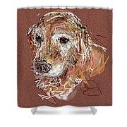Jake Boy Shower Curtain by Joyce Goldin