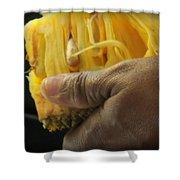 Jamaican Jack Fruit Shower Curtain by Karen Wiles