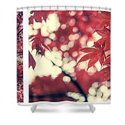 Japanese Maple Collage Shower Curtain by Hannes Cmarits