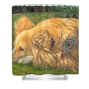 Jealous Jessie Shower Curtain by Emily Hunt and William Holman Hunt