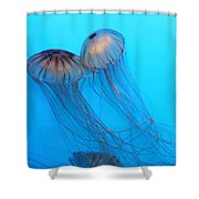 Jelly Fish 5d24945 Shower Curtain by Wingsdomain Art and Photography