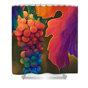 Jewels Of The Vine Shower Curtain by Sandi Whetzel