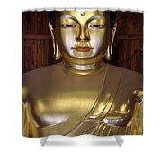 Jogyesa Buddha Shower Curtain by Jean Hall