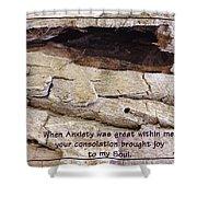 Joy To My Soul Shower Curtain by Sara  Raber