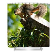Jump Shower Curtain by Optical Playground By MP Ray