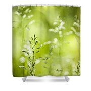 June Green Grass Flowering Shower Curtain by Elena Elisseeva