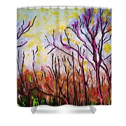 Just Across The River Shower Curtain by Sarah Loft