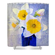 Just Plain Daffy 2 In Blue - Flora - Spring - Daffodil - Narcissus - Jonquil  Shower Curtain by Andee Design