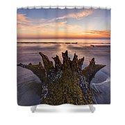 King Neptune Shower Curtain by Debra and Dave Vanderlaan
