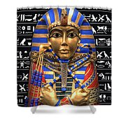 King Of Egypt Shower Curtain by Daniel Hagerman