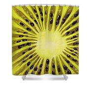 Kiwi Shower Curtain by Anastasiya Malakhova