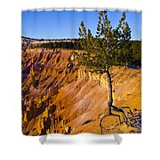 Know Your Roots - Bryce Canyon Shower Curtain by Jon Berghoff