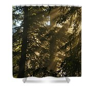 Knowing The Way Shower Curtain by Jeff Swan