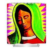 La Virgen Arizona Shower Curtain by Michelle Dallocchio