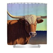 Lady Longhorn Shower Curtain by James W Johnson