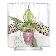 Ladys Slipper - Orchid 16n - Elena Yakubovich Shower Curtain by Elena Yakubovich