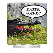 Later Gator Greeting Card Shower Curtain by Al Powell Photography USA